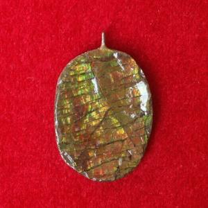 Ammolite  Schmuck oval