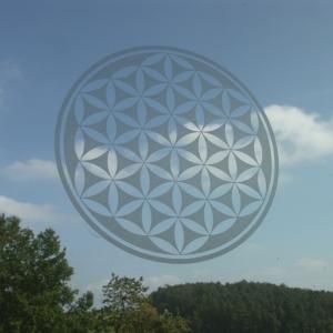 Lebensblume Aufkleber transparent 19.5cm